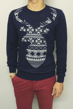 Ảnh số 51: Sweater - Giá: 250.000