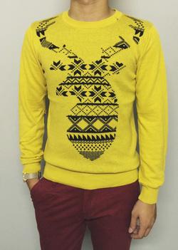 Ảnh số 49: Sweater - Giá: 250.000