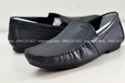 Ảnh số 79: GEOX: giày biết thở - Giá: 800.000
