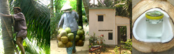 Ảnh số 3: dầu dừa - Giá: 50.000