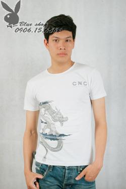 Ảnh số 31: áo phông - Giá: 160.000