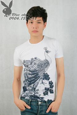 Ảnh số 45: áo phông - Giá: 160.000
