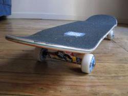 Ảnh số 54: Ván trượt skateboard nhám Canada - Giá: 1.150.000