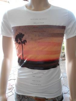 Ảnh số 58: Áo phông Zara - Giá: 120.000
