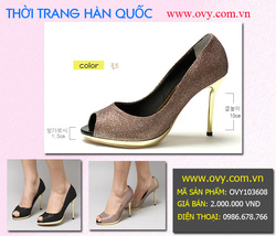 Ảnh số 6: Giày Hàn Quốc Cao Cấp - Giá: 2.000.000