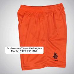 Ảnh số 39: Quần áo bóng đá đội tuyển Hà Lan mùa giải 2013 - Giá: 85.000