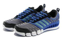 Ảnh số 60: Giày thể thao Adidas ClimaCool Alerate 2 W B786 - Giá: 1.350.000