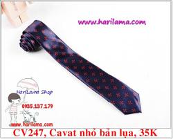 Ảnh số 78: Cavat Nam,  Cavat Nam Bản Nhỏ, Cavat Nam Hà Nội - Giá: 35.000