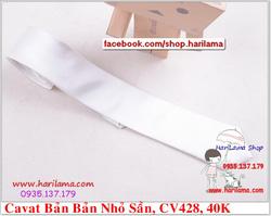Ảnh số 92: Cavat Nam,  Cavat Nam Bản Nhỏ, Cavat Nam Hà Nội - Giá: 40.000