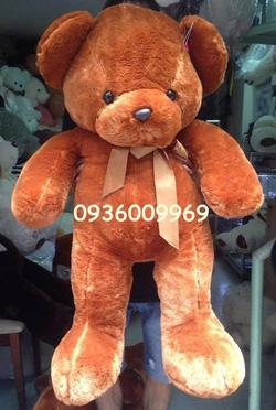 Ảnh số 39: gấu Russ nâu - Giá: 650.000