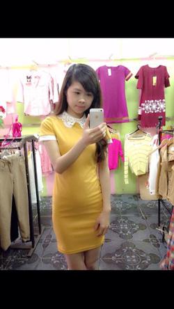 Ảnh số 18: váy cổ ren - Giá: 240.000