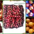Mua chung hoa quả nhập khẩu xịn tại nguồn giá gốc,hàng đảm bảo 100%
