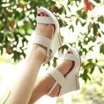 Topic 2:Sandal cao gót,đế xuồng HOT nhất mùa hè 2014.Hàng rẻ đẹp,có sẵn..Fake của các hãng tt nổi tiếng....