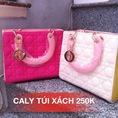 Túi xách siêu đẹp siêu rẻ chất lượng tại Đà Nẵng