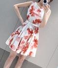 VyVyLyLy shop: Toppic 8: Các loại váy đẹp, xinh, dễ thương cho các nàng chọn lựa