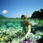 Tour Cù Lao Chàm lặn ngắm san hô giá rẻ