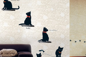 KR 0015  Cat