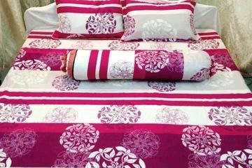 Bộ drap cotton Senky