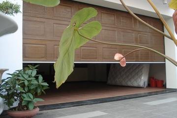cửa cuốn trượt trần gia phát với thương hiệu herodoor