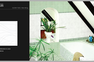 Gạch ốp tường 20x25 American Home CAROLINA 012   WKCA4
