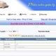Nhận viết phần mềm quản lý, website công ty, bán hàng.