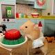 Bán hamster, các loại đồ dùng các thứ nhé.
