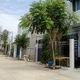 Mua bán đất Khu Đô Thị Bến Xe Miền Đông mới , gần TP HCM . Gi.