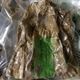 Măng Khô, măng lá, măng lưỡi lợn,măng rừng Tuyên Quang.