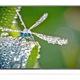 Tivi led LG 42LB582T smart TV full HD giá khuyến mại.