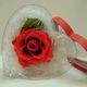 Hoa cho ngày 8 3, tình yêu bất diệt.