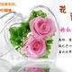 Hoa hồng bất tử, hoa tươi 100%, 5 năm không tàn, cùng nhiều món q.