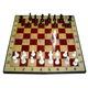Cờ tỷ phú Monopoly phiên bản Tiếng anh và các loại cờ vua, cờ .