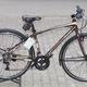 Xe đạp thành phố Jett Strada Comp 2014 kiểu dáng cổ điển, màu nâ.