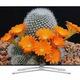 Tivi led samsung 60h6400 model 2014 chính hãng đang có hàng trong kho giá .