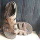 Sandal Dr 2014 giá rẻ.