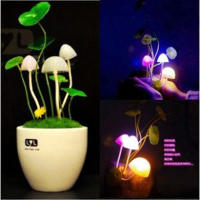 Đèn cảm ứng Avatar