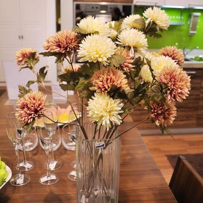 Hoa Cẩm Cúc Bào