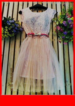 Ảnh số 84: váy - Giá: 210.000