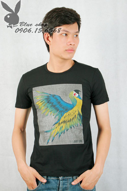 Ảnh số 6: áo phông - Giá: 110.000