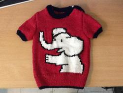 Ảnh số 41: Áo len trẻ em - Giá: 250.000