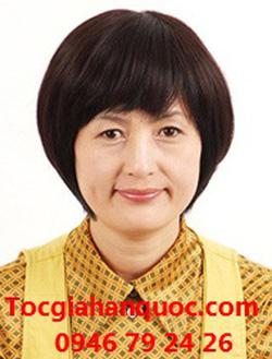 Ảnh số 75: Tóc bộ có da đầu Hàn quốc tóc cho người trung niên - Giá: 650.000