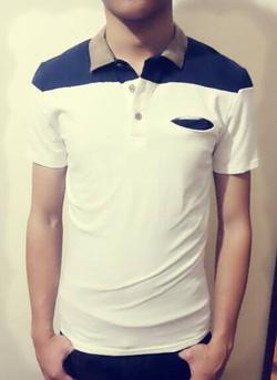 Ảnh số 16: áo phông nam - Giá: 230.000