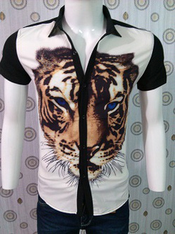 Ảnh số 98: áo sơ mi - Giá: 150.000