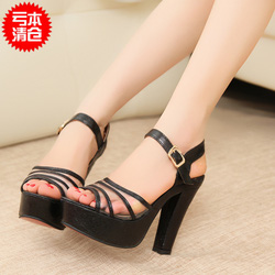 Ảnh số 73: Giày cao gót  model 2013 -GCG073 - Giá: 420.000