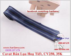 Ảnh số 60: Cavat Nam,  Cavat Nam Bản Nhỏ, Cavat Nam Hà Nội - Giá: 35.000