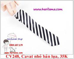 Ảnh số 73: Cavat Nam,  Cavat Nam Bản Nhỏ, Cavat Nam Hà Nội - Giá: 35.000