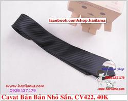 Ảnh số 85: Cavat Nam,  Cavat Nam Bản Nhỏ, Cavat Nam Hà Nội - Giá: 40.000