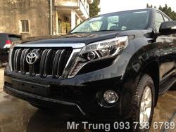 Ảnh số 16: Prado TX L 2013 - Giá: 2.071.000.000