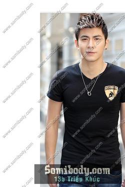 Ảnh số 59: áo thun cổ tim - Giá: 140.000