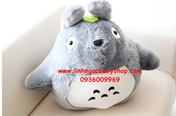 Ảnh số 76: Totoro - Giá: 120.000
